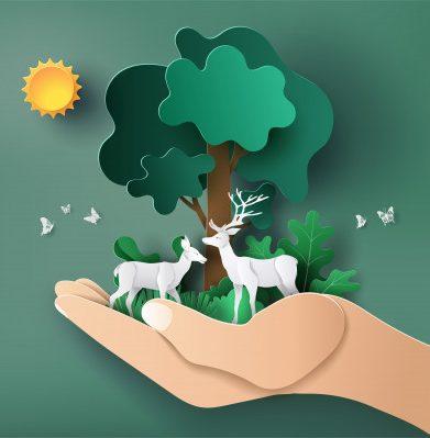 konservasi untuk perubahan iklim