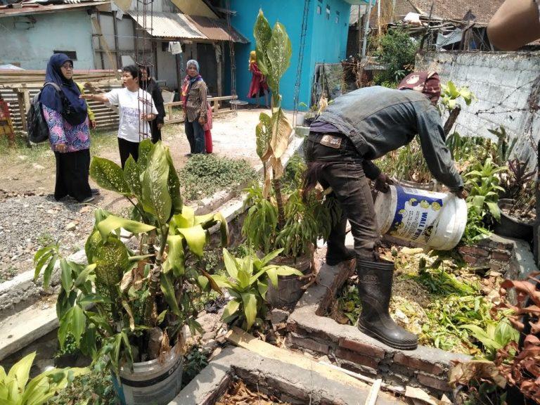 lubang kompos zero waste cities